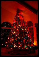 Isn't it Pretty? (BdwayDiva1) Tags: christmas tree canon austin eos lights colorful texas tx garland ornament 2007 30d