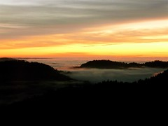Coastal Valley Fog From the Ridge (judi berdis) Tags: sunset fog ridge nca coastrange mendocinoco coolestphotographers