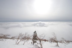 雲海を背に