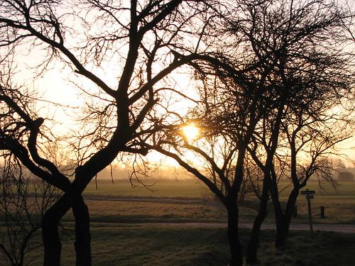 Sonnenaufgang am Stegepfuhl