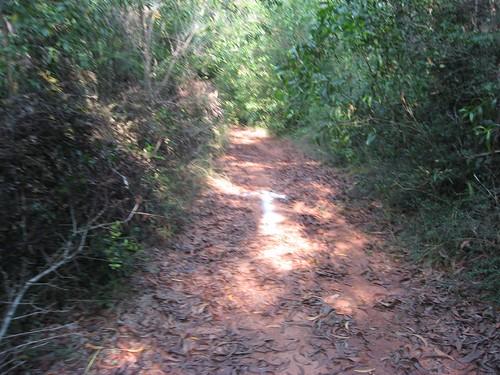 Auroville Marathon running track