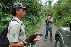 Filming Park Ranger & babe monkey. (Blackstallionhills.com) Tags: costa black green film nature monkey video creative rica hills adventure jungle catalog eco stallion blackstallionhillscom