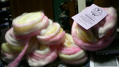 Spunky's February Fiber ready to spin