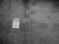 Sign on a wall. ([ Kane ]) Tags: blackandwhite art sign wall australia qld kane gledhill kanegledhill humanhabits wwwhumanhabitscomau kanegledhillphotography