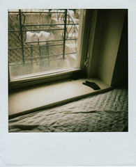 (For Air) Tags: polaroid bedroomwindow greenview