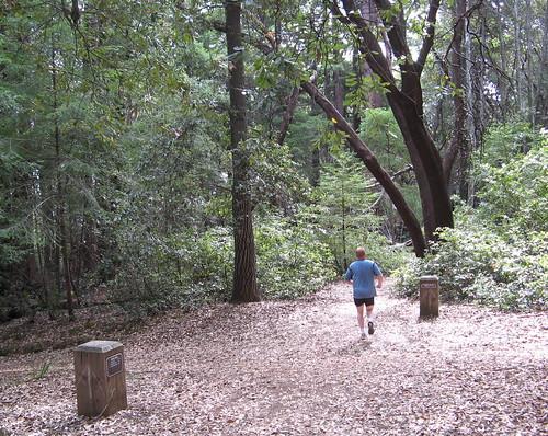 Dean Trail