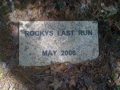 Rockys Last Run