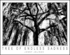 Tree Of Endless Sadness (Jonny Jelinek) Tags: blackandwhite bw tree photoshop sadness nikond100 schwarzweiss weepingwillow baum orton trauerweide mywinners platinumphoto anawesomeshot superbmasterpiece excellentphotographer bwartaward