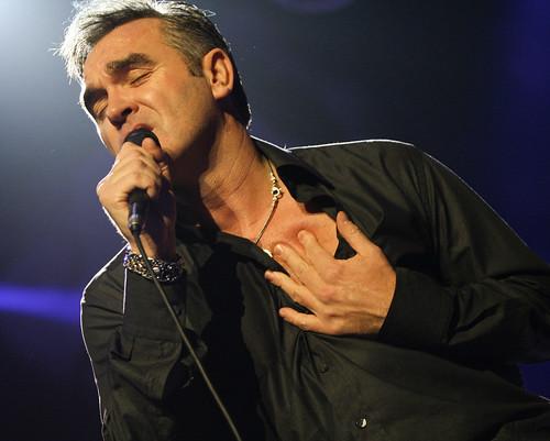 Morrissey-7822.jpg