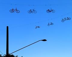 Cruzando Sampa (Eli K Hayasaka) Tags: brazil brasil nikon sãopaulo sampa getty bicicletas gettyimages grafismo graphism eduardosrur duetos hayasaka colourartaward elikhayasaka superdueto