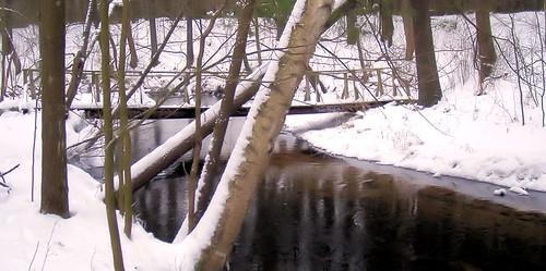 The Bridge and Creek in Winter