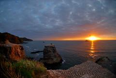 Sunset from Gannet's POV