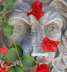 Bougainvillea. (JannK) Tags: flowers fountain artistic expression bougainvillea southerncalifornia soe artisticexpression supershot anawesomeshot diamondclassphotographer goldstaraward