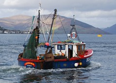 (Zak355) Tags: fishingboats rothesay isleofbute