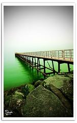 Green Sea (Hussain Shah.) Tags: city sea green d50 nikon sigma kuwait 1020mm kuwaiti shah hussain muwali