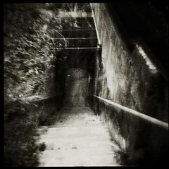 Descent (Parcelpacker) Tags: film holga diafine hp5 palabra