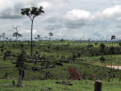 Deforestation near Capixaba, Acre, Brazil