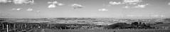 """Les plaines de Garonne (Brigitte .. . """"Tatie Clic"""") Tags: 2008020216 février hiver paysage panorama panoramique monochrome noiretblanc nb ciel nuages vallée plaine monderural champs campagnefrançaise campagne arbre bosquet arbres lotetgaronne aquitaine francesudouest vignoble albret paysdebuzet paysdalbret"""