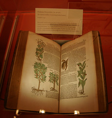 botanical book