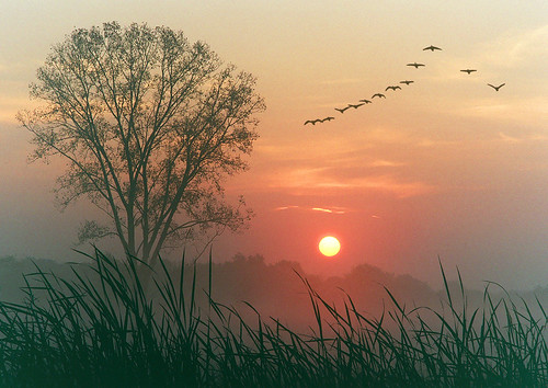Autumn dawn by James Jordan, on Flickr