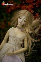 9 (Sassy Strawberry) Tags: doll dolls serenity bjd dollfie superdollfie volks abjd korat dollfies sassystrawberry phantomdoll evildolly