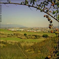 Montseny (m@tr) Tags: barcelona espaa canon catalunya montseny parquenaturaldelmontseny canonefs1855mmf3556 canoneos400ddigital elvallsoriental mtr marcovianna