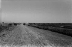 Across the Eyre Highway on way to Perth 1965 (spelio) Tags: construction plain nullarbor