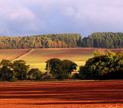 Waterloo Fields (billtam) Tags: blue autumn trees red sky colour green clouds canon landscape scotland sandstone soil fields smrgsbord a620 naturesfinest scottishborders flickrsbest platinumphoto diamondclassphotographer colourartaward natureoutpost excapture platinumsuperstar