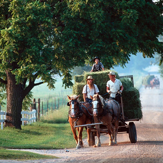 Amish Country 3