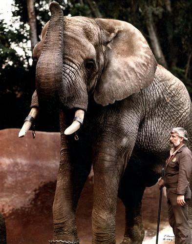 Samson and Scott Riddle