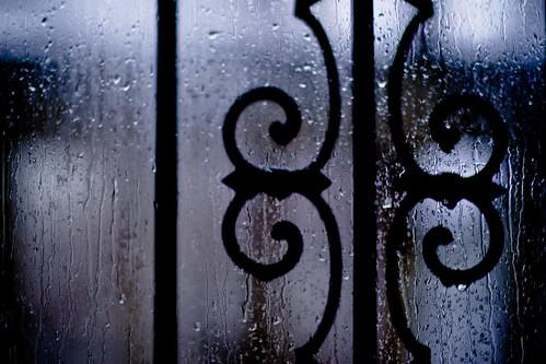 Rainy Day Shooting III (3 of 3)