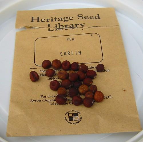 carlin peas