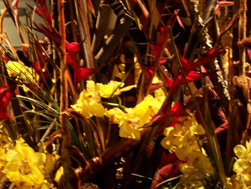 flowershow 019