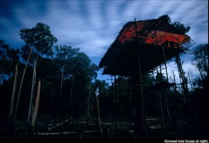 28 imágenes sorprendentes de un pueblo que aún vive en los árboles | Tree People por George Steinmetz ceslava 18