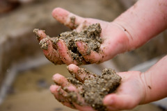 Getting your hands dirty / Sandbox