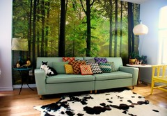 A forest in my living room! (kimhas7cats) Tags: wallpaper wall forest cat vintage design living mural fifties interior room retro pillows couch sofa thrift rug bargello decor cowhide thecatwhoturnedonandoff