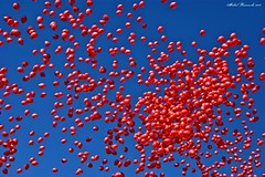 Milion baloons in the sky. (brunekji) Tags: sky beautiful sony poland polska warsaw moment extraordinary baloons warszawa incredibly milion greatcolour aplusphoto thebestofday gnneniyisi