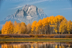 Grand Tetons in Fall (Matt Anderson Photography) Tags: brush change glass grand grandtetons lansdscape mattanderson mattandersonphotography outdoor reflection secluded travel wyoming aspens beautinnature bow clouds color fall fallcolors moran mount mt orange overlook ox oxbowbend rabbit sage scenic seasons snakeriver tranquil trees vista warm yellow beautiful nature landscape tourism gettingawayfromitall traveldestinations beautifl madison wisconsin usa