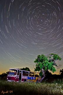 Bus Polar