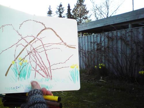 briar sketchbreak