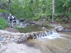 P1010266 linda ann stream crossing Photo