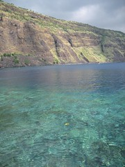 The crystal clear waters of the Big Island's Kealakekua Bay