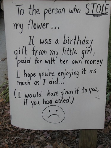 To the person who STOLE my flower...It was a birthday gift from my little girl, paid for with her own money. I hope you're enjoying it as much as I did... (I would have it it to you if you had asked.) :(