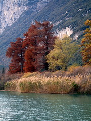 Colori d'autunno di intranetlife, su Flickr