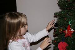 Cassie Decor Big Tree
