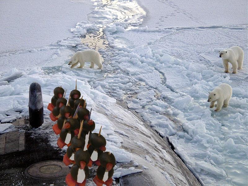 Pingüinos a la carrera