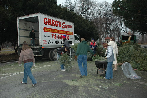 Offloading another Truckload of Trees