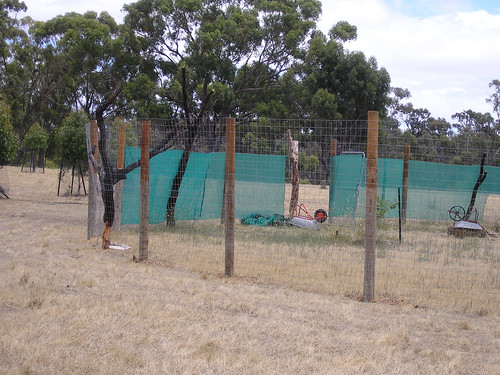 orchard fence closeup.jpg