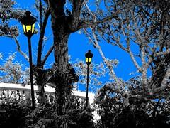 YELLOW LAMP POST (charlie1020) Tags: blue yellow sailboat baroto