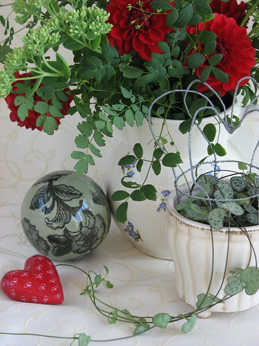 Valentine still life by Poppins' Garden.